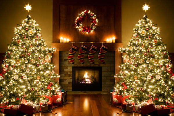 Caring for Your Christmas Tree