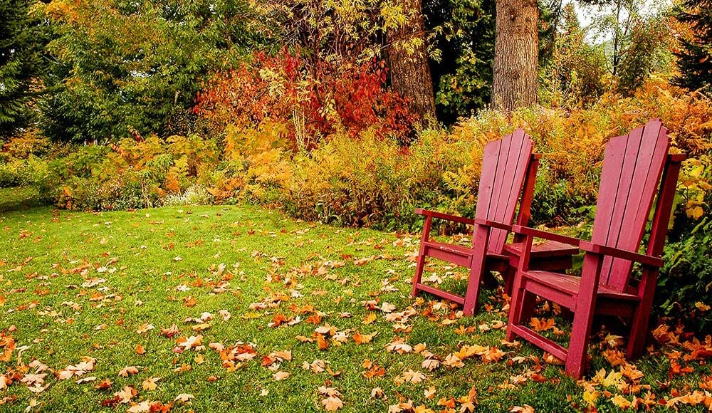 November Garden and Lawn Care Checklist